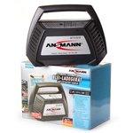 ANSMANN 1001-0014 ALCT 6-24/10, Зарядное устройство для батарей
