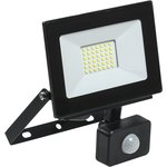 Прожектор светодиодный СДО 06-30Д 6500К IP54 с ДД черн. IEK LPDO602-30-65-K02