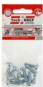 Винт М3х20 с полукруглой головкой цинк. DIN 7985 (уп.10шт) пакет Tech-Krep 103008