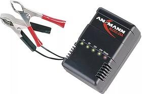 Фото 1/3 ALCS 2-24 А, Устройство зарядное для свинцово-кислотных аккумуляторов