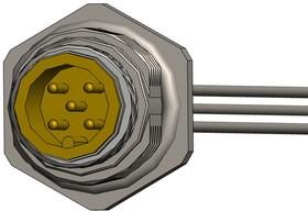 """MPM12A05I12AR02, M12 5 pos male brass/nickel rear PG9 12"""" pigtail 17AH5372"""