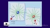 Смотреть видео: Электрический заряд и закон Кулона