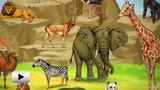 Смотреть видео: Серия звуковых плакатов ЗНАТОК - весёлый зоопарк