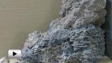 Смотреть видео: Стадонт — акриловый полимер