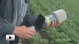 Смотреть видео: Емкостные датчики влажности