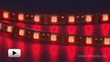 Watch video: LS606 red LED strip 60 LED per meter