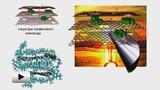 Смотреть видео: Графено-кремниевый композит