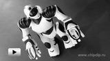 Смотреть видео: Мини-робот Человек Robosapien V2 (8191)