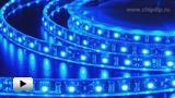 Смотреть видео: LS606 синяя светодиодная лента 60 LED на метр