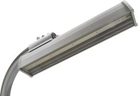 Фото 1/2 PLO 50 Вт cons, Уличный светодиодный светильник