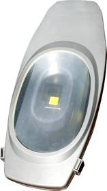 FER107, 50Вт 2700K уличный светильник светодиодный