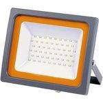 Прожектор PFL -SC- 100w 6500K IP65 матовое стекло 5001428