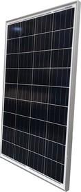Фотоэлектрический солнечный модуль (ФСМ) Delta SM 50-12 P 50
